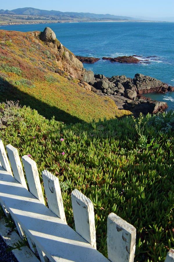 Download Coastal Views stock photo. Image of beach, green, rocky - 558132