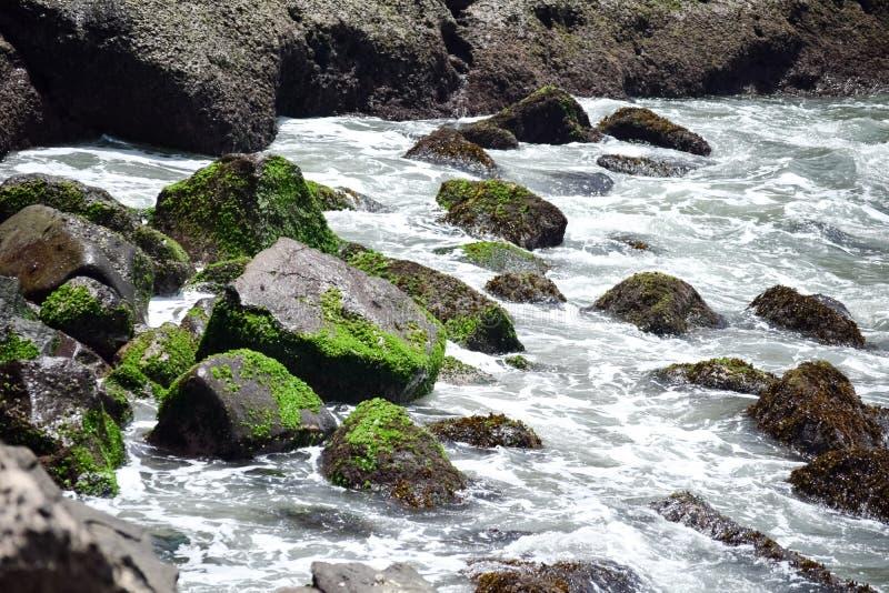Coastal waves royalty free stock images
