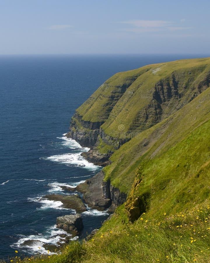 Download Coastline stock photo. Image of canada, ocean, marys - 14146978
