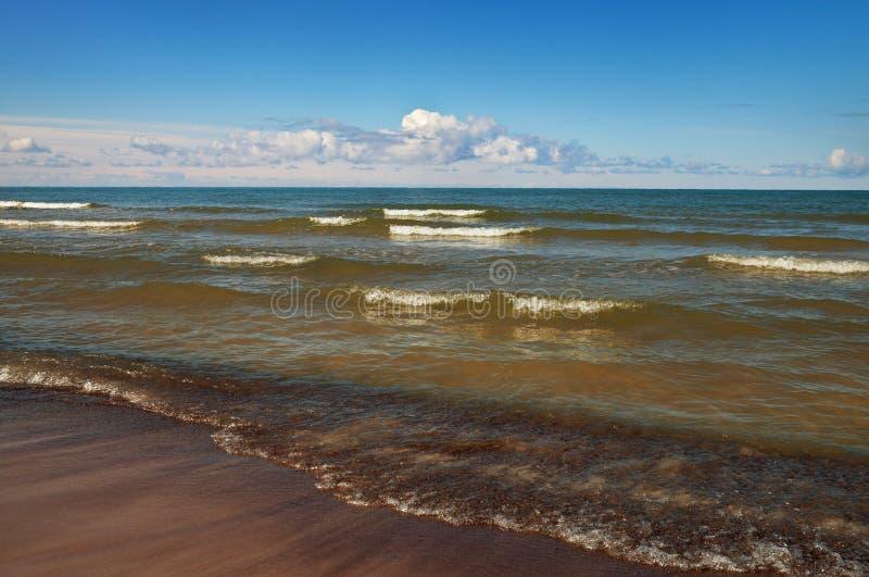 Coastline of Balltic sea royalty free stock images