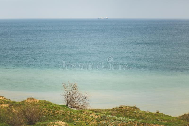 Coastline Green grasses field with trees and bushes near water ocean or sea. Beautiful landscape. Environment, nature royalty free stock image
