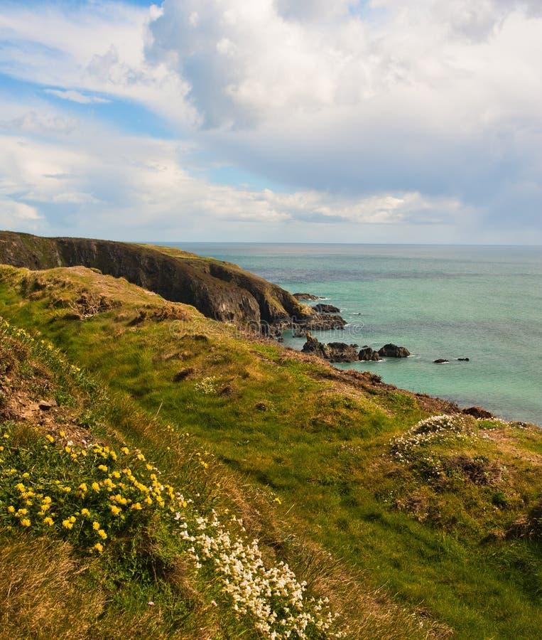 Download Coastline in Ireland stock image. Image of coast, rock - 24450175