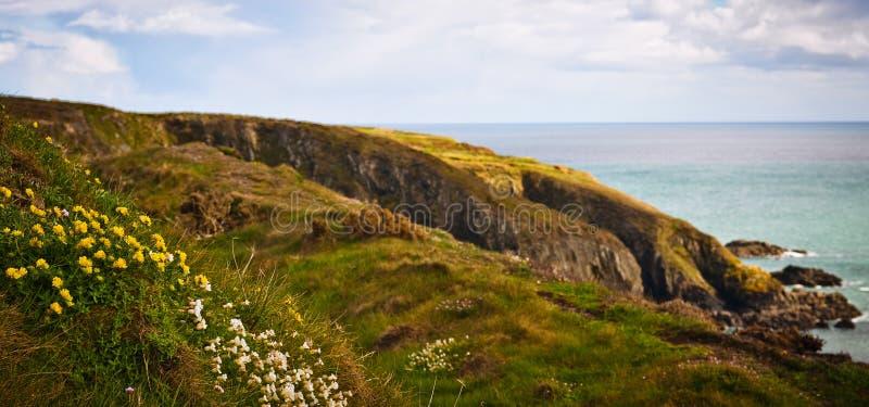 Download Coastline in Ireland stock photo. Image of landscape - 25466762