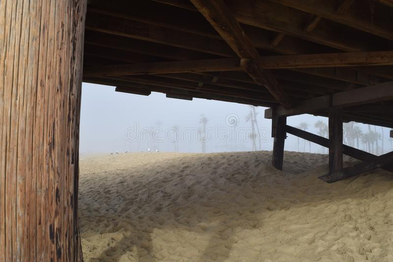 Coastline Palm Trees Framed Under the Pier in the Fog. The underside of Balboa Pier frames the palm covered coast on foggy morning in Newport Beach California stock photo