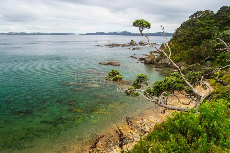 Coastline view from Tapeka Point Track with blue sky above in Russell, Northland, New Zealand.  royalty free stock photography