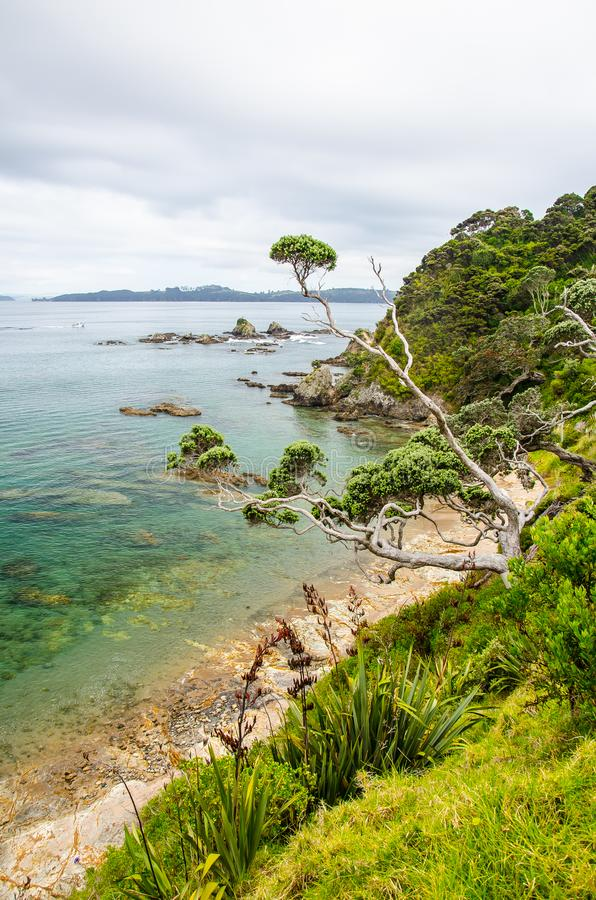 Coastline view from Tapeka Point Track with blue sky above in Russell, Northland, New Zealand.  royalty free stock photos