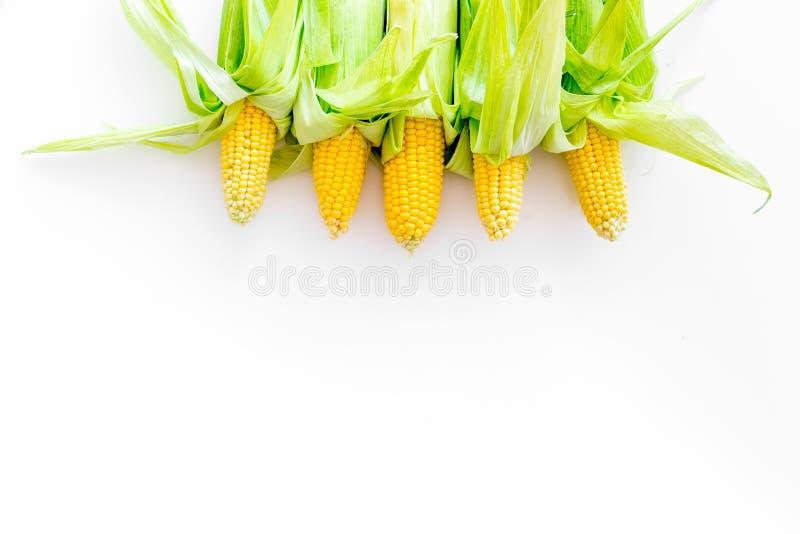 Cob corns no espaço de cópias de visão superior de fundo branco fotografia de stock