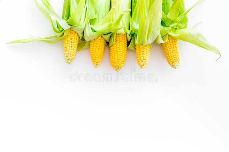Cob corns on white background top view copyspace stock photography