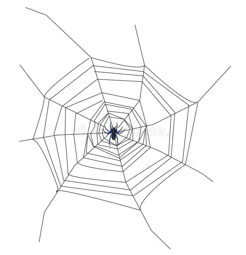 Download Cob web stock illustration. Image of silk, spinning, black - 28326003