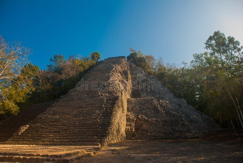 Coba, México, Iucatão: Pirâmide maia de Nohoch Mul em Coba Estão em cima 120 estreitos e as etapas íngremes fotos de stock