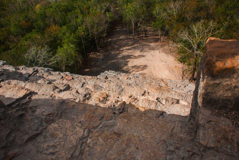 Coba, México, Iucatão: Pirâmide maia de Nohoch Mul em Coba Estão em cima 120 estreitos e as etapas íngremes fotografia de stock royalty free