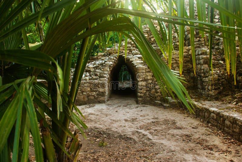 Coba, México, Yucatán: Complejo arqueológico, ruinas y pirámides en la ciudad maya antigua imagenes de archivo