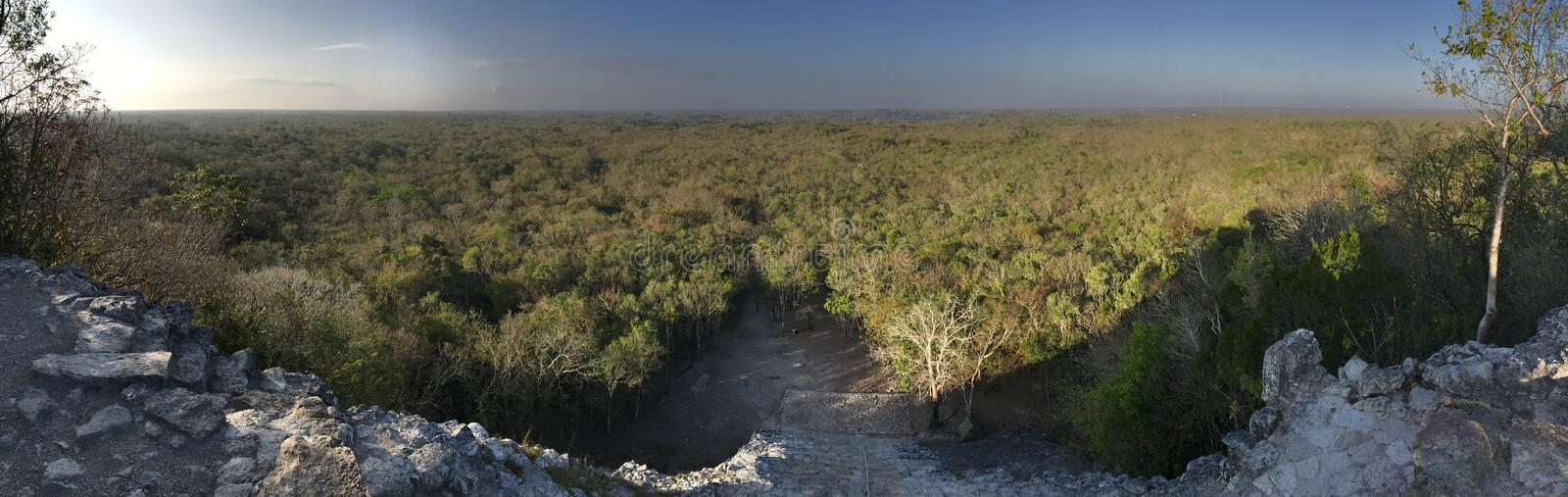 Coba Pyramid view. View from top of Coba Pyramid in Quintana Roo Mexico royalty free stock image