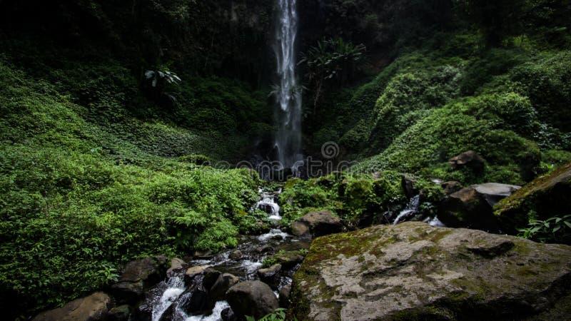 Coban Watu Ondo vattenfall - Indonesien arkivfoton