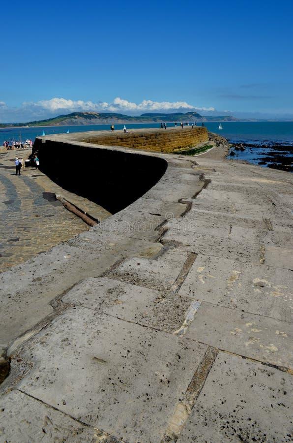Cobben Lyme Regis fotografering för bildbyråer