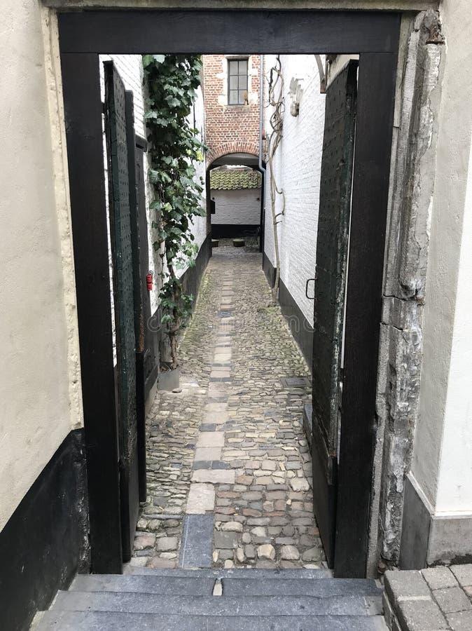 Cobble de Manier van de Steensteeg in Antwerpen stock afbeelding