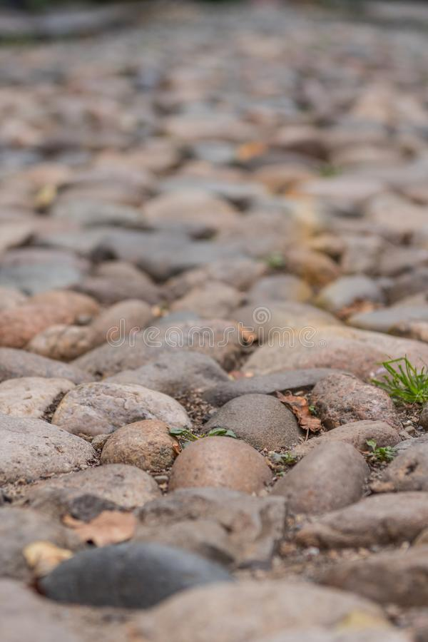 Cobble Stone Close Up Narrow Focus stock image