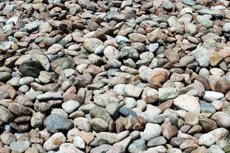 Cobble-stone del fiume fotografia stock