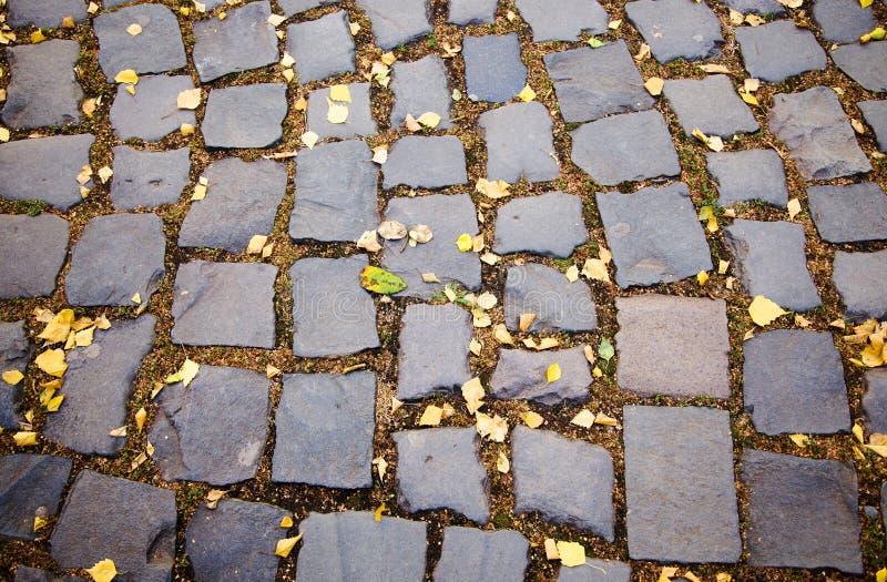 Cobble-stones weg stock afbeelding