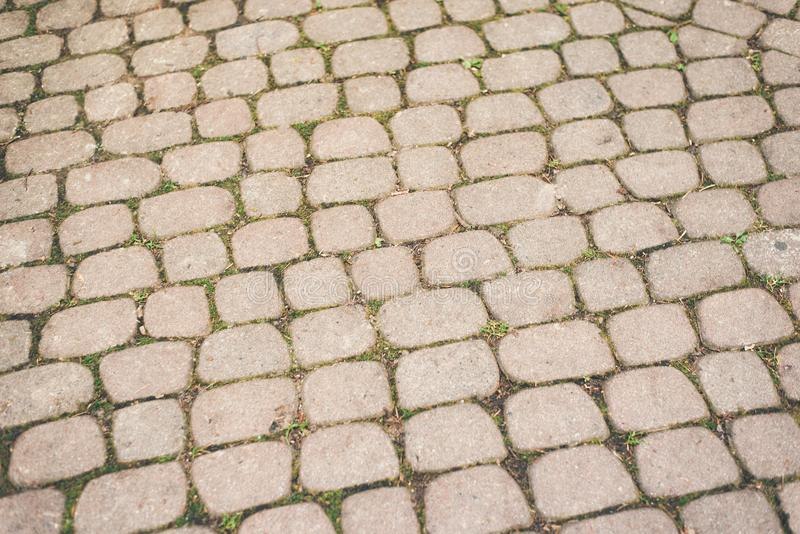 Cobbled pavement made of oval cobblestones. Backgrounds and textures stock photography