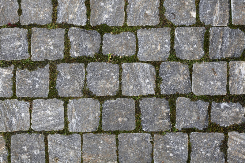 Cobbled Pavement Texture royalty free stock image