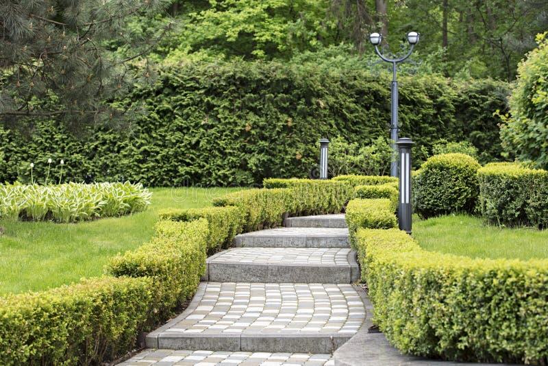 Cobbled pisou fuga em um parque bonito moldado por arbustos cortados fotos de stock royalty free