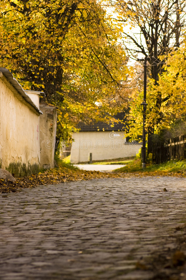 Cobbled street in autumn. Small street in the historical center of city stock images