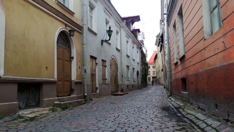 Cobbledstraat in de Middeleeuwse Oude Stad van Tallinn stock afbeelding