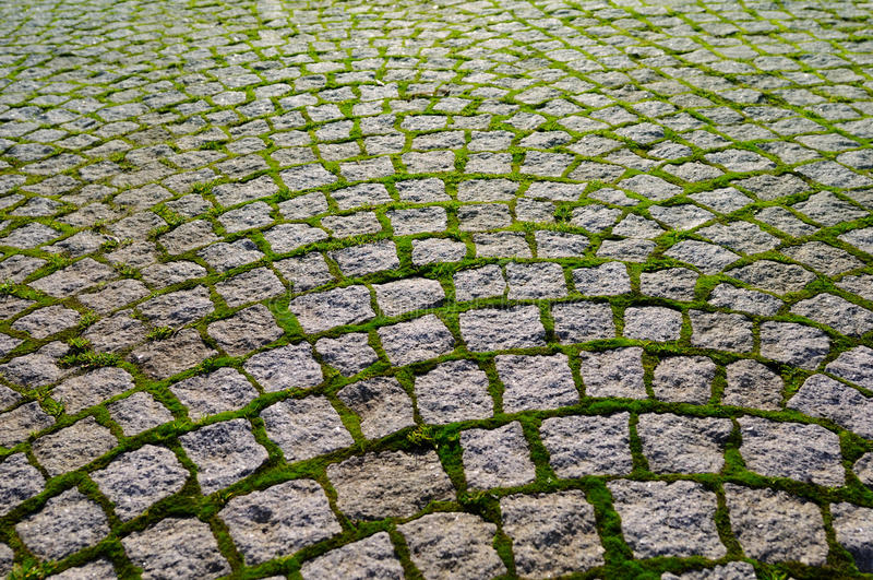 Cobblestone con i mattoni dell'erba che mostrano prospettiva. immagini stock