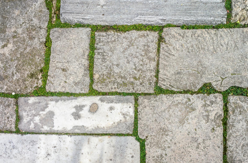 Cobblestone with grass texture stock photo image of for Stone path in grass