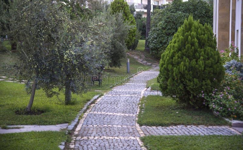 Cobblestone walk in the garden in summer. Cobblestone walk in the garden in summer stock photo