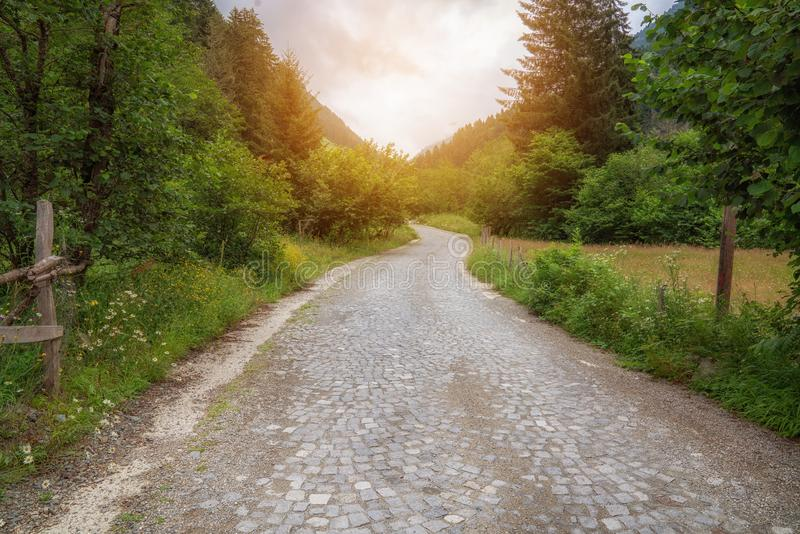 Cobblestone walk way in to the park in forest. royalty free stock photos