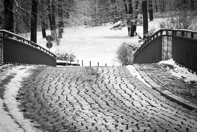 Cobblestoned Straße lizenzfreie stockfotografie