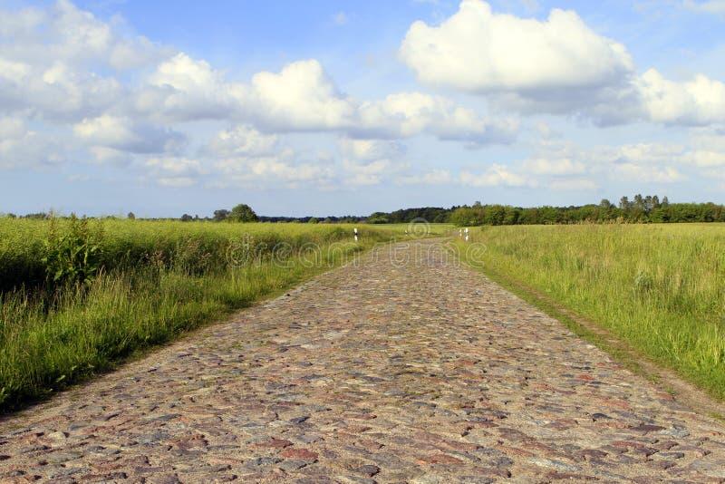 Cobblestoned Straße in Ruegen-Insel stockbild