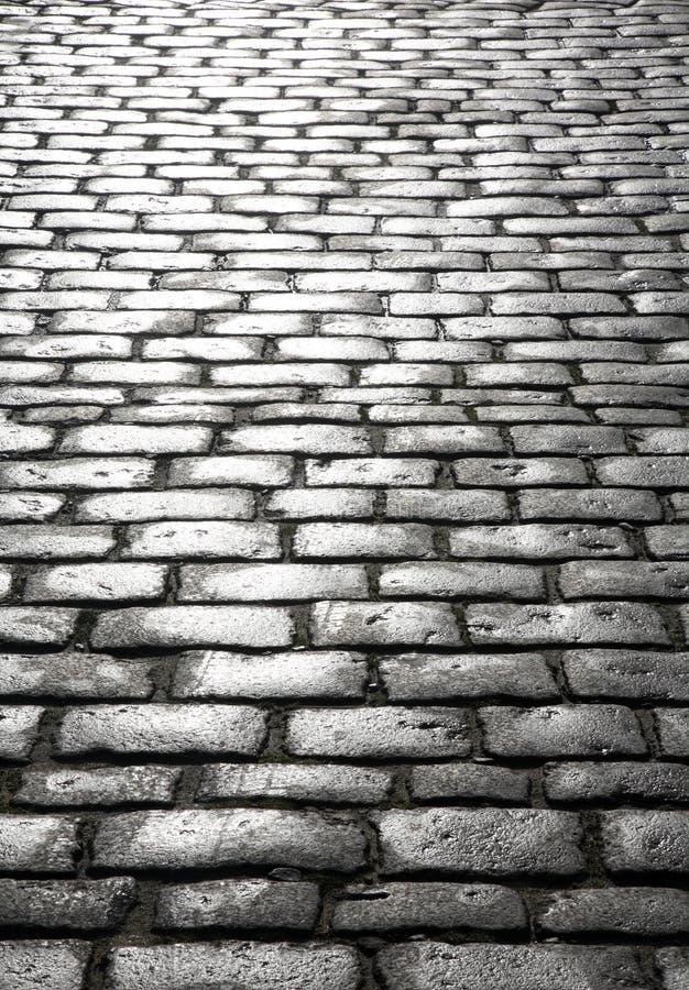 Cobblestones molhados. imagem de stock
