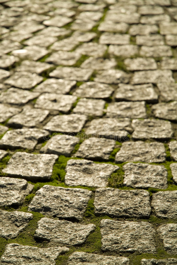 Cobblestones with moss royalty free stock images