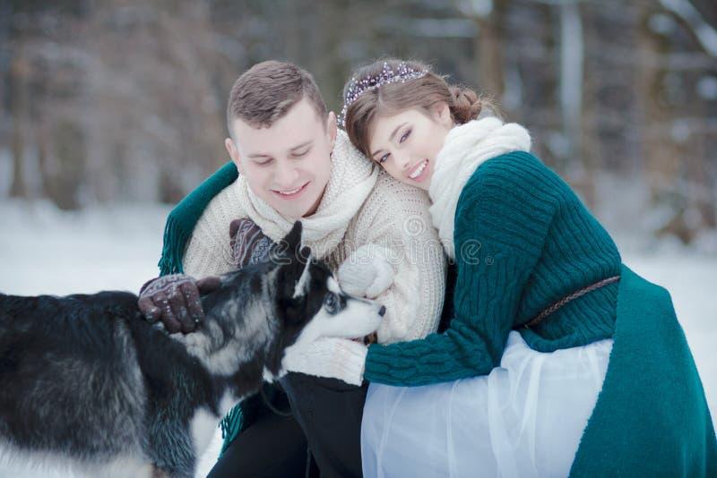Coberta do homem novo e da mulher com jogo geral de lãs verdes com cão de puxar trenós Siberian fotografia de stock