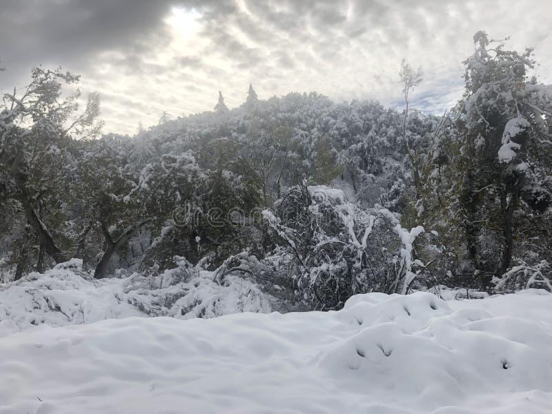 Cobertura de neve imagens de stock