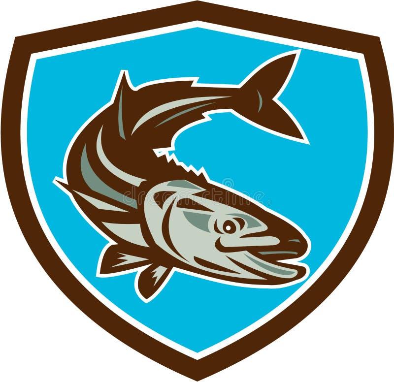 Fish Diving Down Shield Retro. Illustration of a (Rachycentron canadum) or black kingfish, black salmon, ling, lemonfish, crabeater, prodigal son, black bonito stock illustration