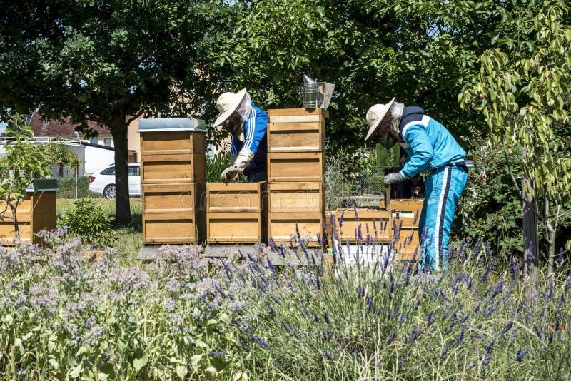 apiculteur 05