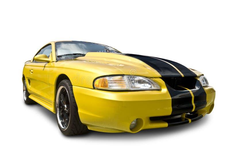 Cobra amarilla del mustango fotografía de archivo