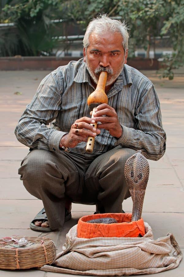 Cobra que está sendo encantada - Índia foto de stock
