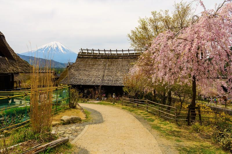 Cobrir com sapê a casa e o sakura com mt fuji fotografia de stock royalty free