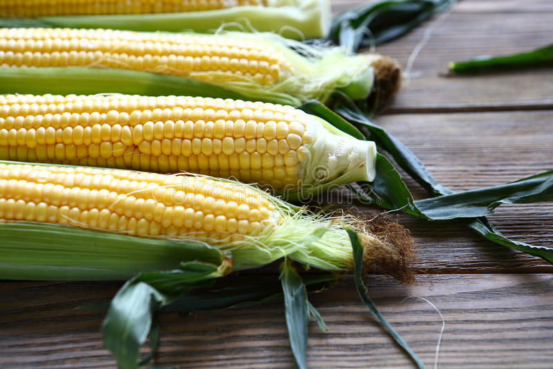 Cobs fresh sweet corn royalty free stock photos