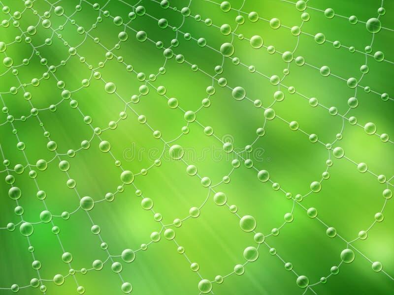Cobweb dopo pioggia, illustrazione fotografia stock libera da diritti