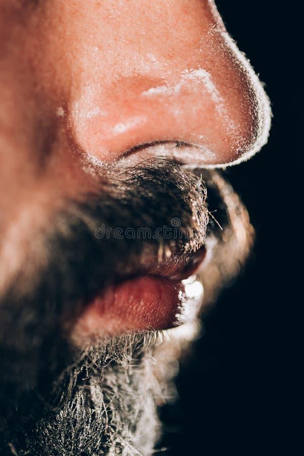 Cocaïne sur le nez images stock