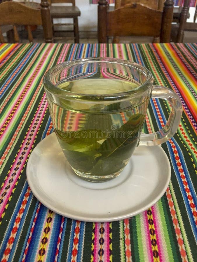 Coca Tea Drink fotografia de stock