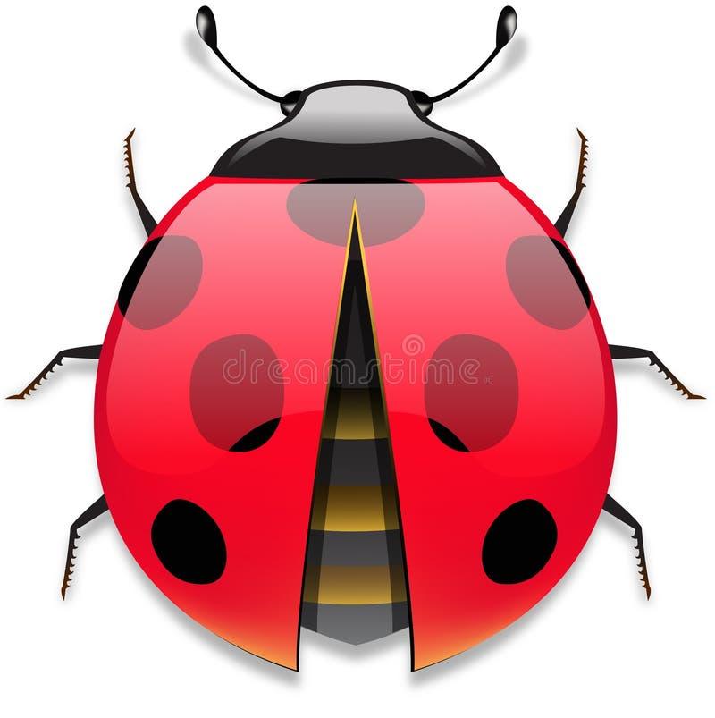 Download Coccinella illustrazione di stock. Illustrazione di mosca - 7309999