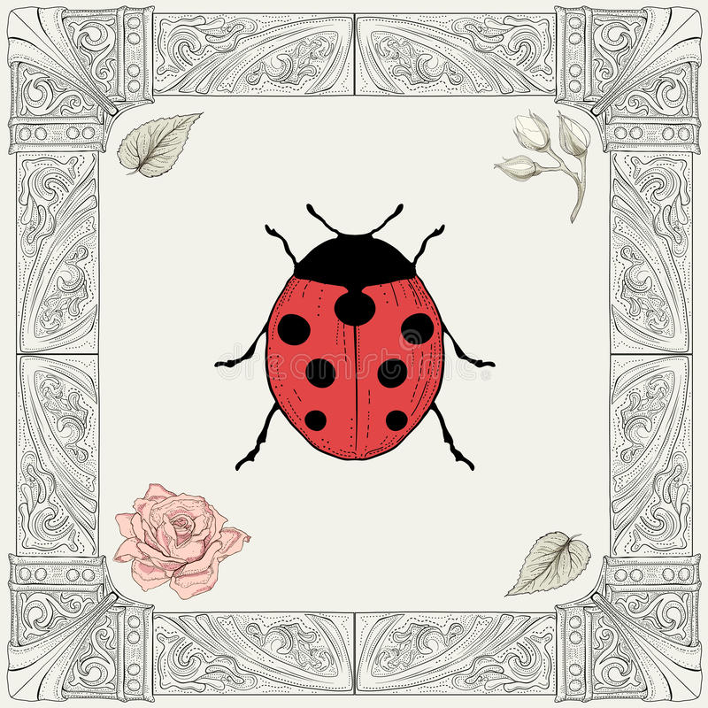 Coccinella e disegno rosa royalty illustrazione gratis