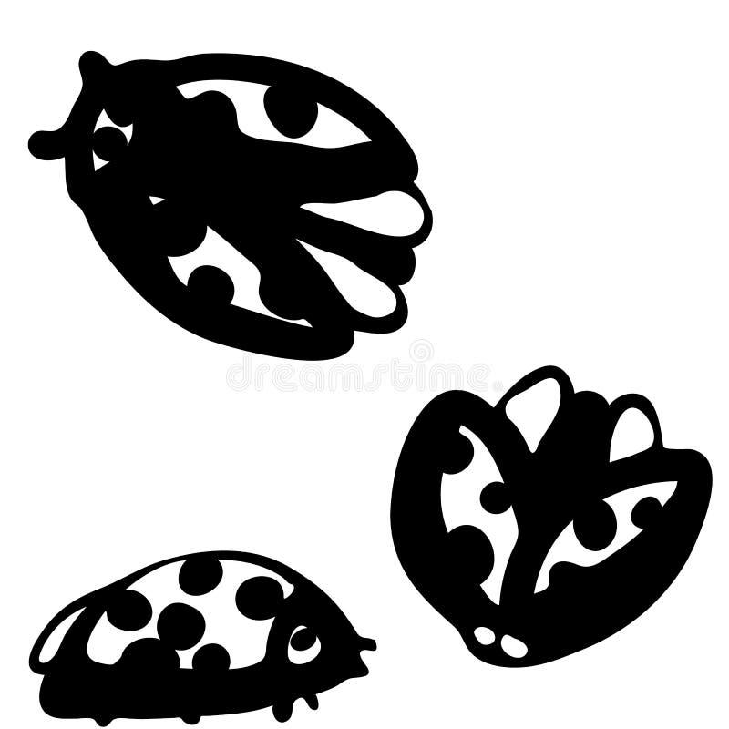 Coccinelle disegnate a mano grafiche del fumetto royalty illustrazione gratis